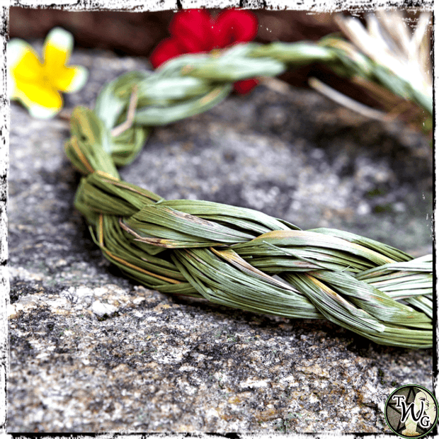 Sweetgrass Braid for High Vibes, Smudging Herbs, The Witch's Guide