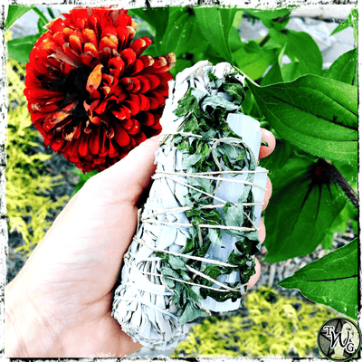 White Sage, Mugwort, Selenite Herbal Smudge Bundle, Spirit Realms, Astral Travel, The Witch's Guide