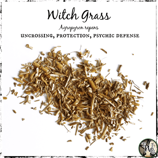 Witch Grass for Uncrossing, Protection, Psychic Defense, The Witch's Guide