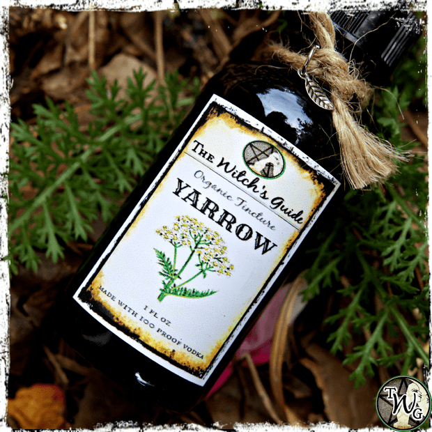 YARROW Herbal Tincture | Detoxification, Allergies