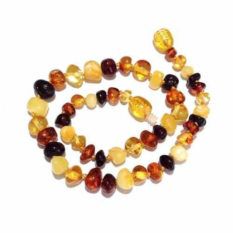 Adult Pebble Beach Polished Mixed Baltic Amber Necklace Jewellery / Necklaces / Beaded Necklaces Love Amber X