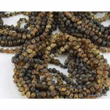 Child Sage Raw Light Green Baltic Amber Necklace Jewellery / Necklaces / Beaded Necklaces Love Amber X