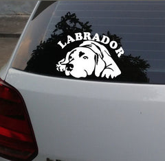 Labrador Car Decal Sticker