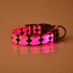 Night Safety Glow Pet Collar Leash- 9 colors, 4 sizes