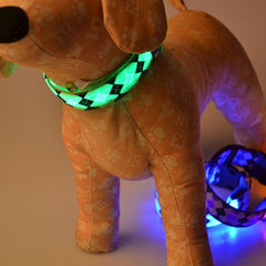 Safety Glow Collar on toy dog