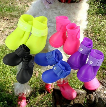 5 color boots