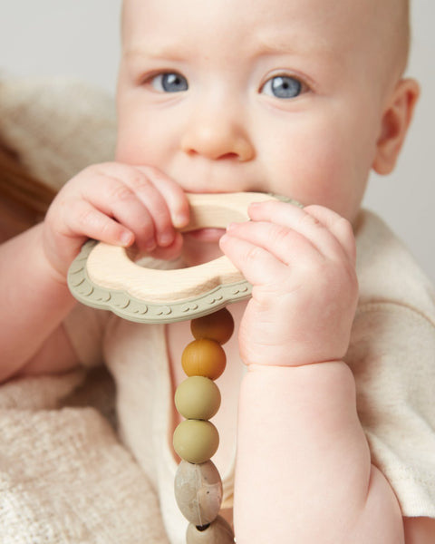 Saddle Teether + Clip Set