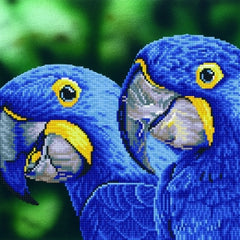 Intermediate Diamond Dotz - Blue Hyacinth Macaws|Peinture diamant Diamond Dotz intermédiaire - Aras Hyacinthes