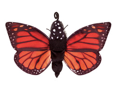 Monarch Butterfly Life Cycle Puppet|Marionnette cycle de vie du papillon Monarque