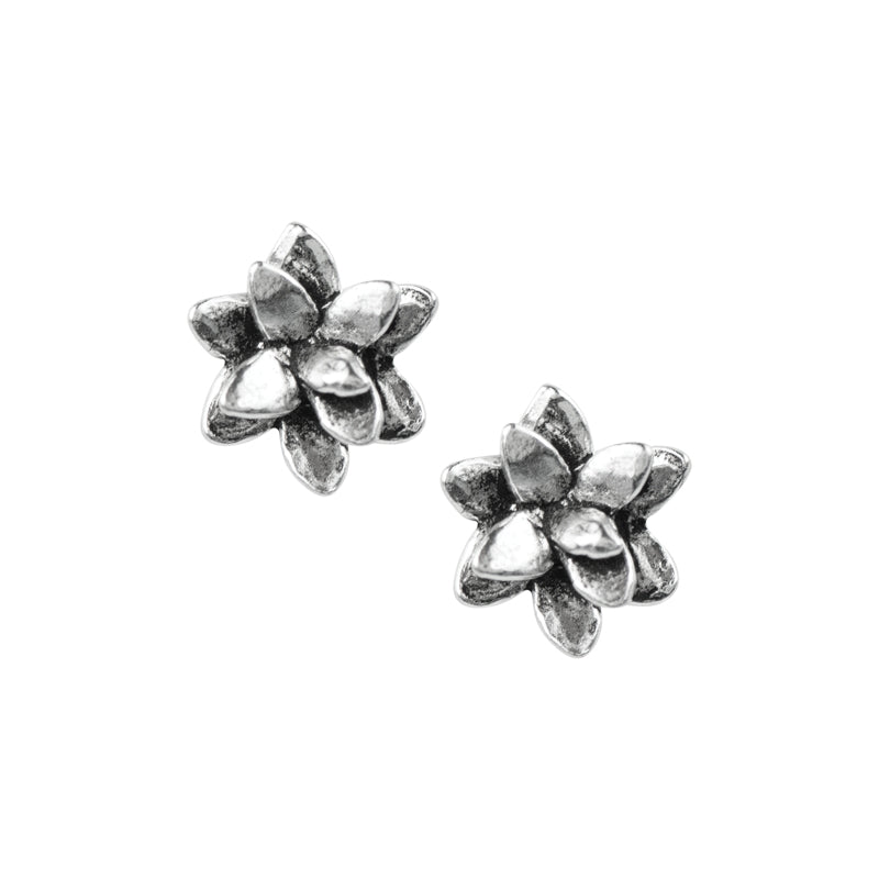 Succulent Studs - Small
