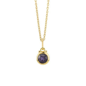September Birthstone Charm Necklace