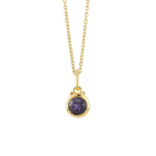 September Birthstone Charm Necklace in Gold