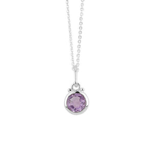 February Birthstone Charm Necklace