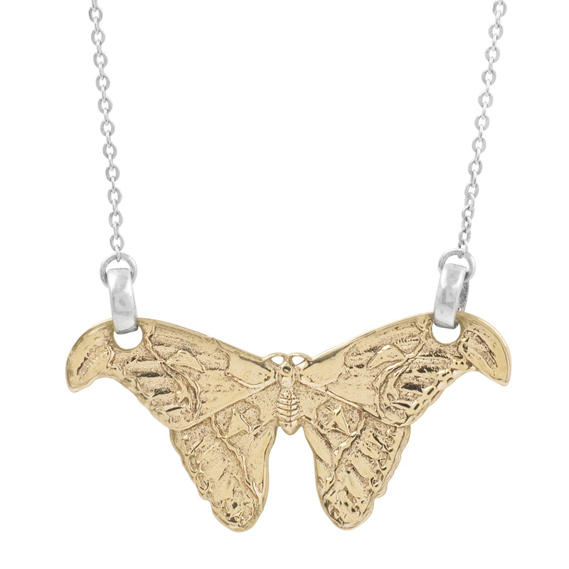 Atlas Moth Necklace in Bronze