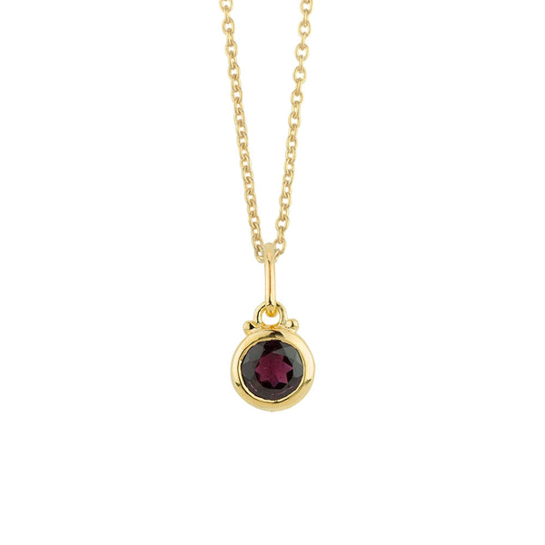 January Birthstone Charm Necklace in Gold