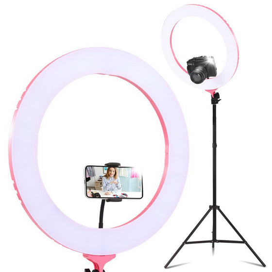 "19"" LED Ring Light 6500K 5800LM Diva With Stand Make Up Studio Video"