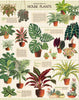 Vintage Puzzle - House Plants - Cavallini Co. - Tiny Paper Co. Afterpay Toy Store Australia
