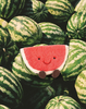 Amuseable Watermelon - Jellycat - Tiny Paper Co. Afterpay Toy Store Australia