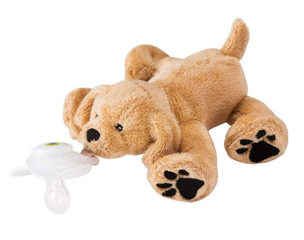 Paci-Plushies Buddy Rufus Retriever - Paci-Plushies - Tiny Paper Co. Afterpay Toy Store Australia