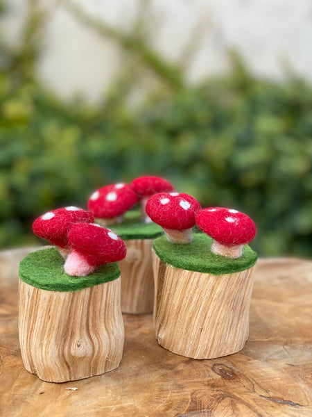 Papoose Toys Felt Toadstool Trunk Set - Papoose Toys - Tiny Paper Co. Afterpay Toy Store Australia