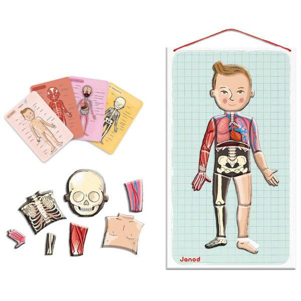 Bodymagnet Puzzle - The Human Body Puzzle-Puzzle-Janod-Tiny Paper Co-Afterpay-Australia-Toy-Store - Janod - Tiny Paper Co. Afterpay Toy Store Australia