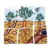 Five Layer Carrot Puzzle-Puzzle-Beleduc-Tiny Paper Co-Afterpay-Australia-Toy-Store - Beleduc - Tiny Paper Co. Afterpay Toy Store Australia