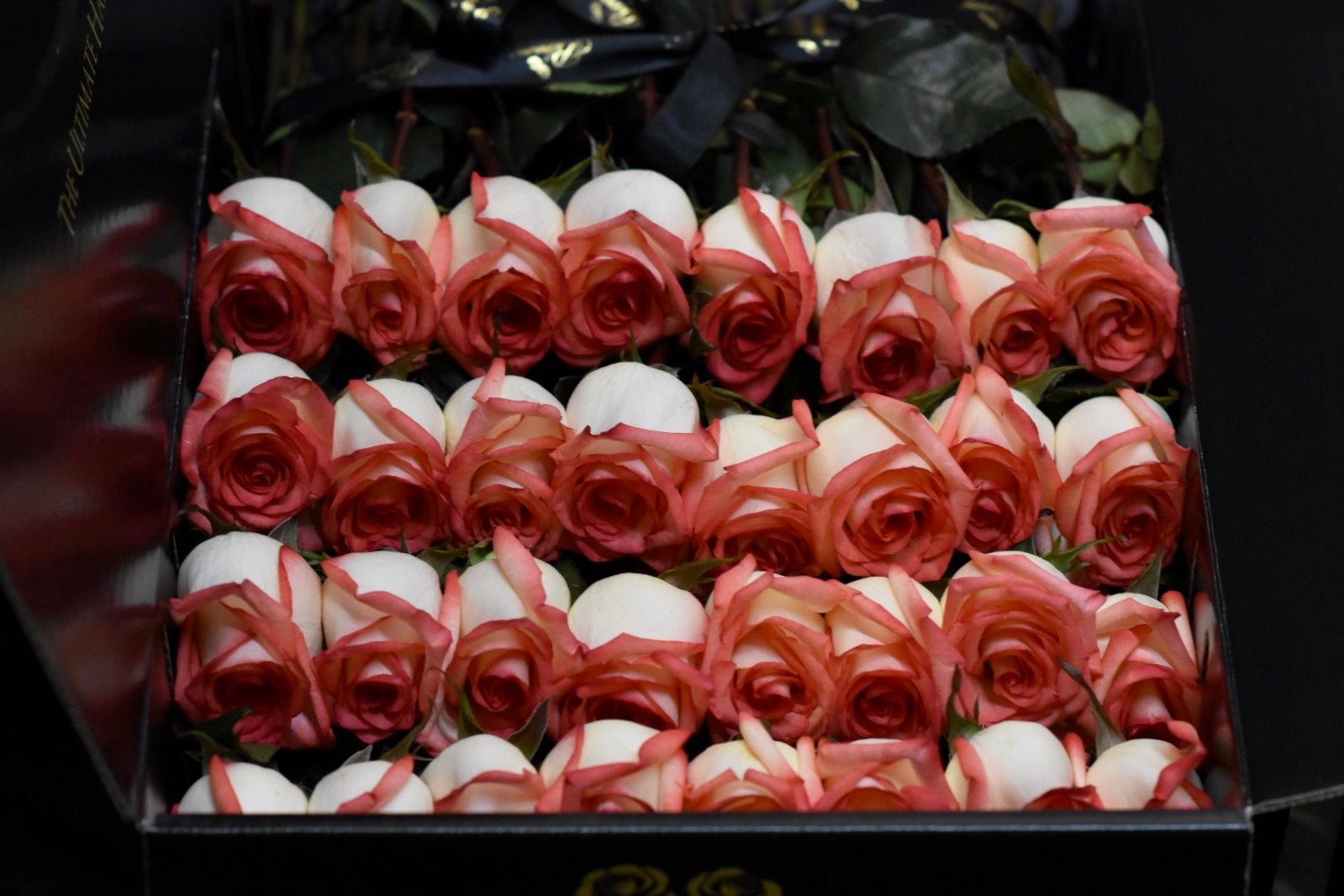 expensive roses in a box