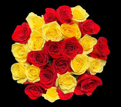 second_checkered_red_yellow