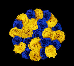 checkered_royalblue_yellow