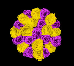 checkered_purple_yellow