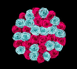 checkered_hotpink_teal