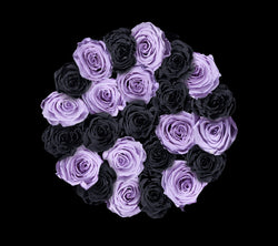 checkered_black_lilac
