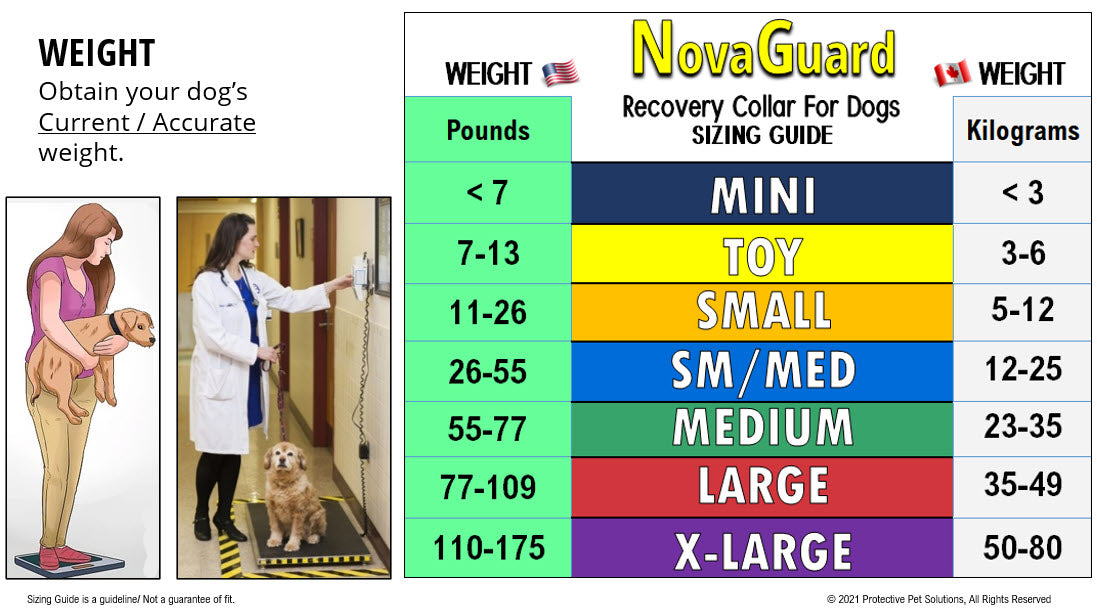 NovaGuard Recovery Collar for Dogs and Cats Sizing Guide