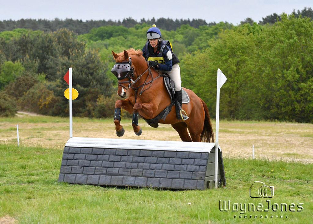 Riding and Jumping with Recovery Vizor for Horses