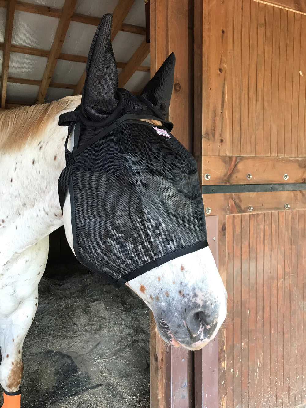 EquiVizor Fly Mask with Ear Protection - Protective Pet Solutions