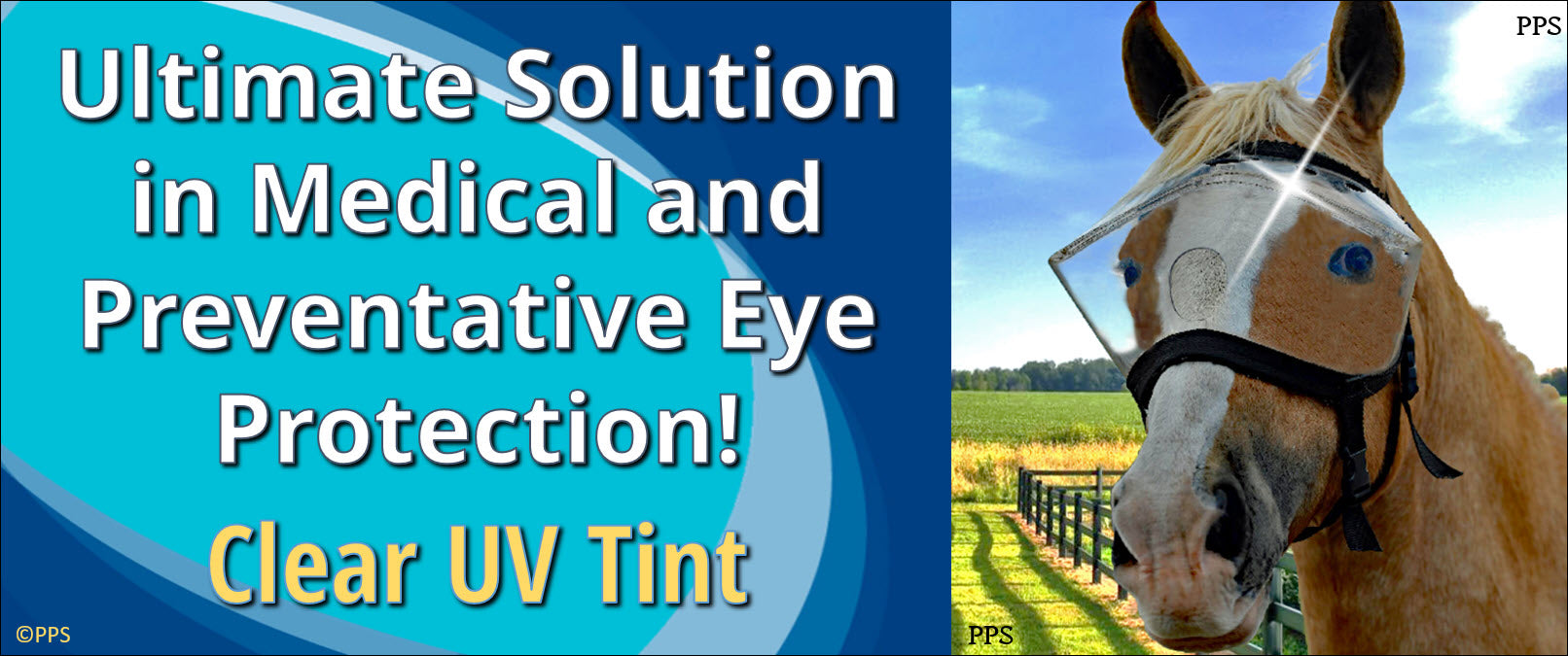 Recovery Vizor for Horses - UV Eye and Face Protection