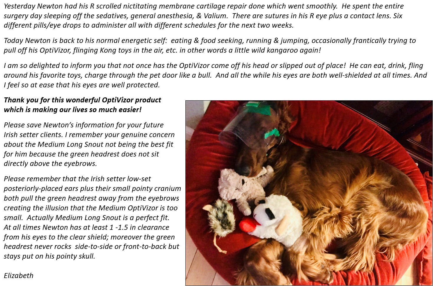 Protective Pet Solutions OptiVizor Testimonial