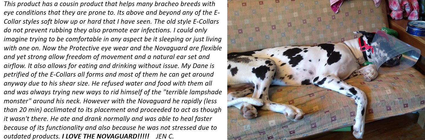 Protective Pet Solutions Testimonial