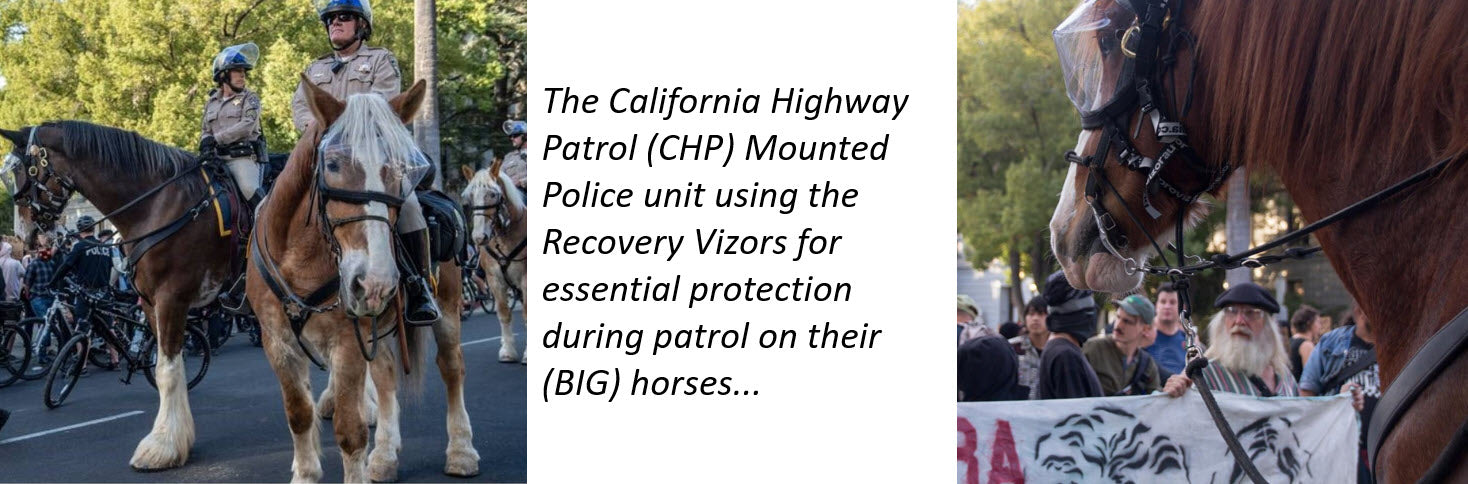 California Highway Patrol Mounted Police using the Recovery Vizor for Riot Protection for horses' eyes