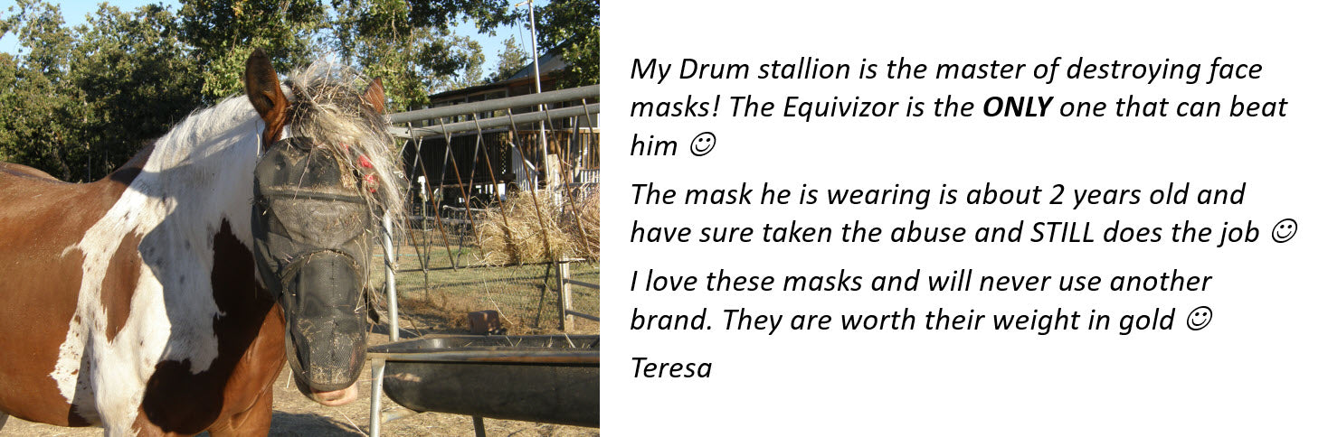 EquiVizor fly mask for horses Testimonial to being durable