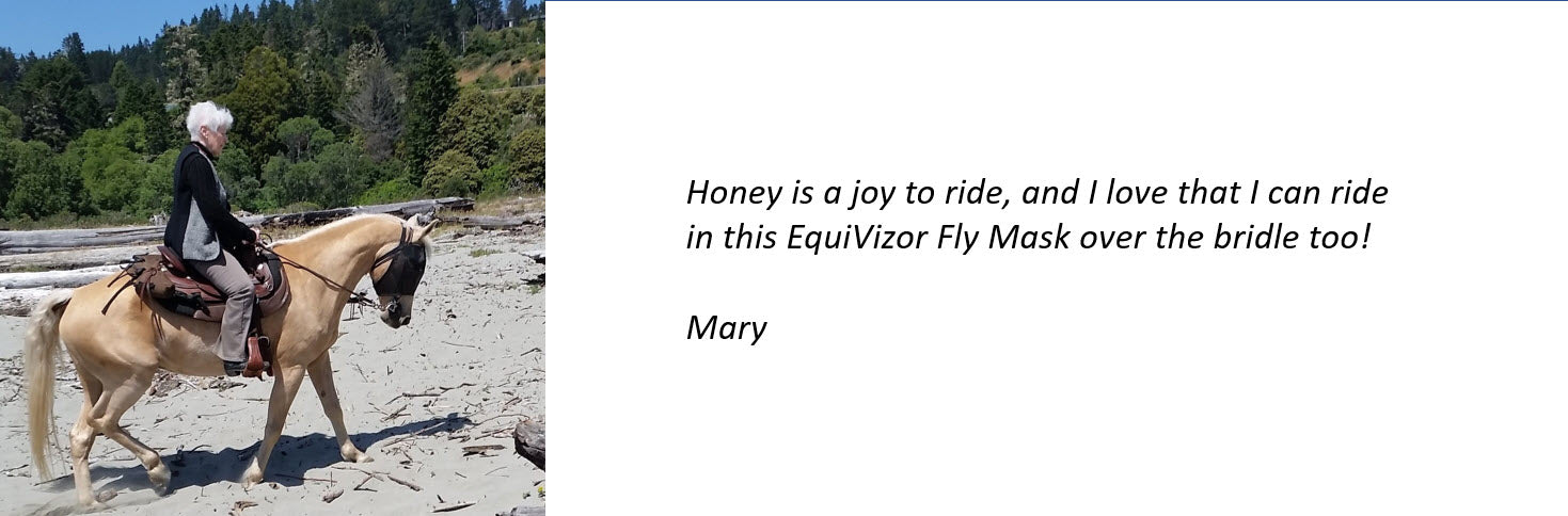 EquiVizor Fly Mask Testimonial - Able to ride with it on over the bridle