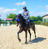 eVysor Active Horse UV Eye Protection