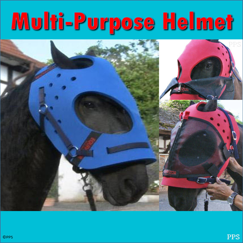 EquiVizor Multi-Purpose Helmet