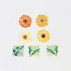 Bande Sticker Washi Tapes - African Daisy (Mini)
