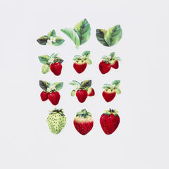Bande Sticker Washi Tapes - Strawberry