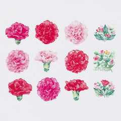 [Limited Edition] Bande Sticker Washi Tapes - Carnation