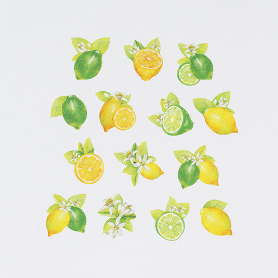 Bande Sticker Washi Tapes - Lemon & Lime ('17 Summer Series)
