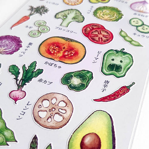 Food Cross Section Sticker - Vegetables
