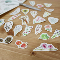 Bon Bon Stickers - Flowers Artworks