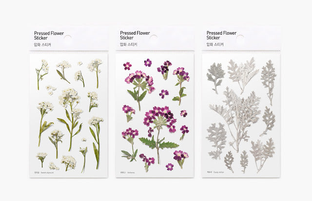 Press Flower Stickers Sweet Alyssum